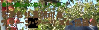 あおもり五所川原グリーン・ツーリズム協議会:豊かな農山村の暮らしから学ぶ